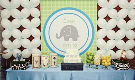 Evan's Elephant Party