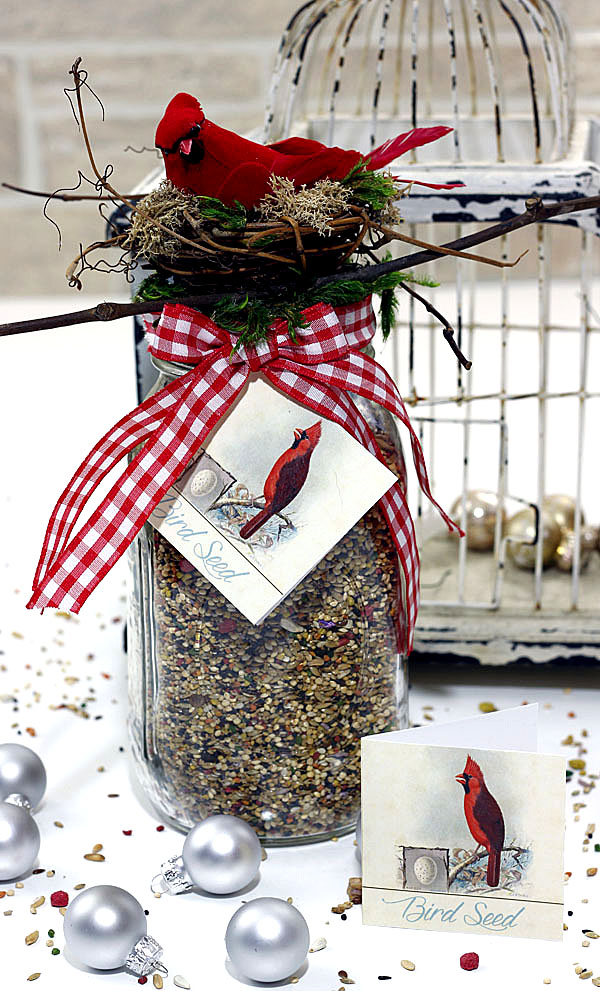 bird-seed-in-a-jar