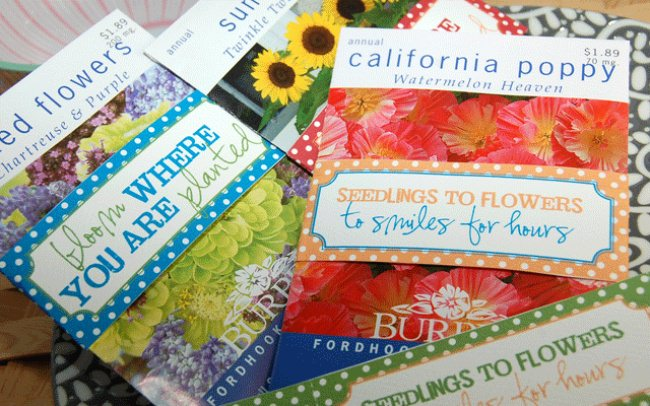 Seed Packet Wraps