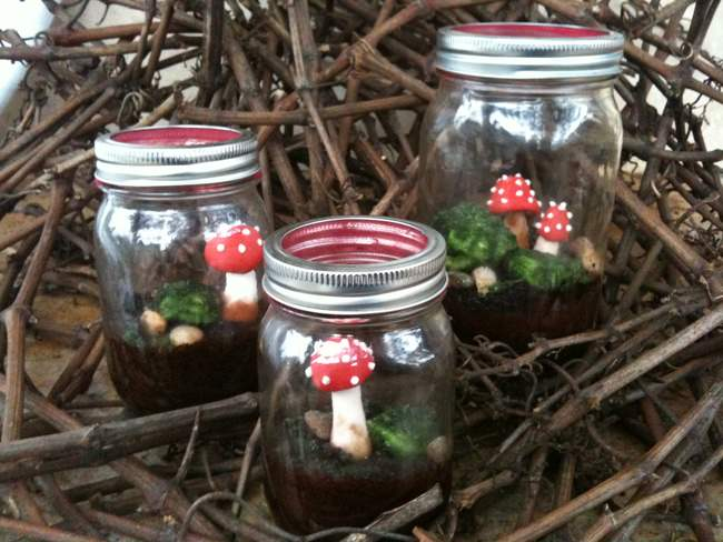 Terrarium Cakes in a Jar