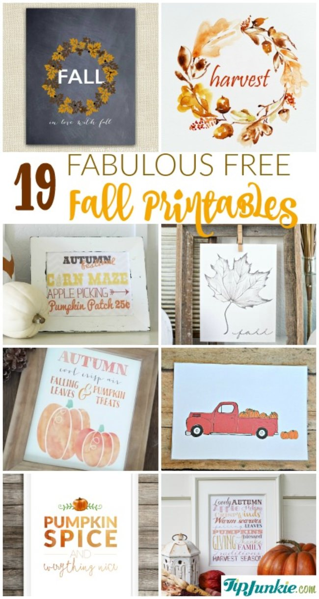 photograph relating to Free Fall Printable referred to as 19 Wonderful Cost-free Slide Printables Suggestion Junkie