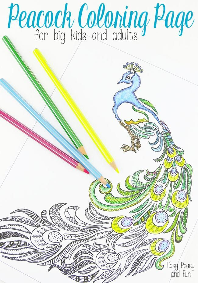 Peacock-Coloring-Page-for-Adults