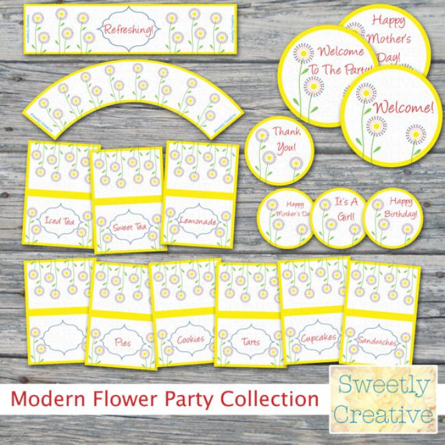 $9 Today! Modern Flower Party Collection