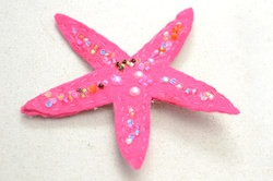 Photo Instructions on How to Make a Starfish Brooch within 3 Steps