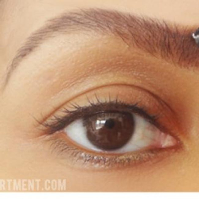 Eye Brow 101 {Makeup}