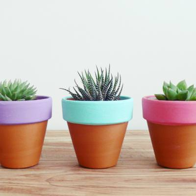 Painted Terracotta Pots {Plants and Planters}